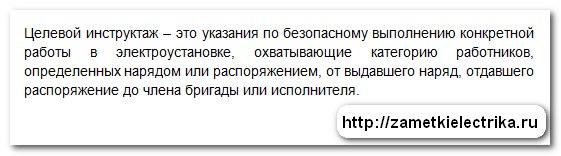 dopusk_brigady_k_rabote_v_elektroustanovkax_po_naryadu_допуск_бригады_в_электроустановках_по_наряду_26